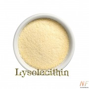 ЛИЗОЛЕЦИТИН. LISOLECITHIN