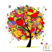 Комплекс витаминов. Витоплекс, Vitaplex™™